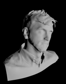 The head scan